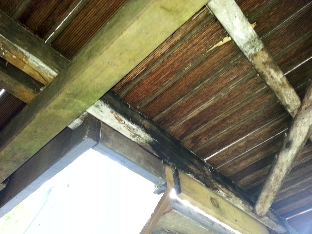 Photo gallery 0412764233 building pest inspections for Balcony joists