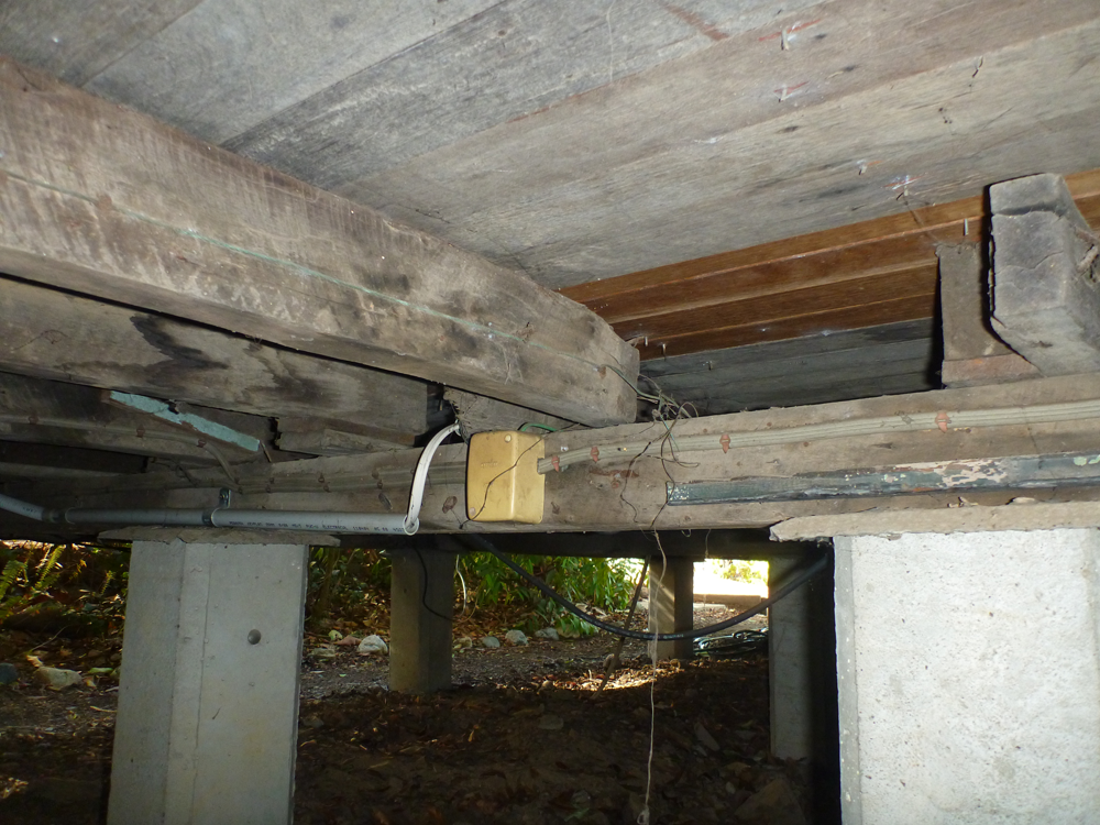 Photo Gallery 0412764233 Building Amp Pest Inspections