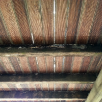 Fungal-Rot-on-Deck-Flooring,-Joists-and-Beams
